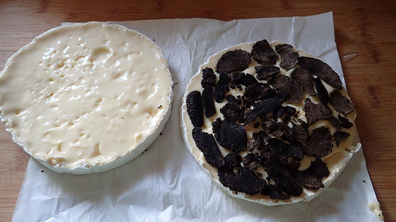 Camembert truffé